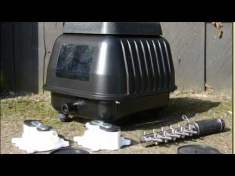 Septic Air Pumps To Clean Your Septic Tank Septic Air Pumps Septic Tank Pond Koi
