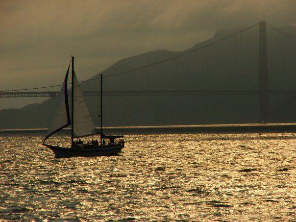 Gold Golden Gate    (Copyright © Mena Sambiasi)