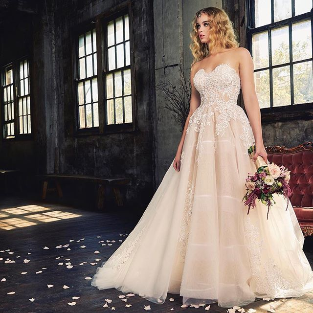 e61703a557c9 Warehouse Studio for Wedding Photography at Sydney Props Photo Studios em  Bridal Boutique on Instagram • Photos and Videos