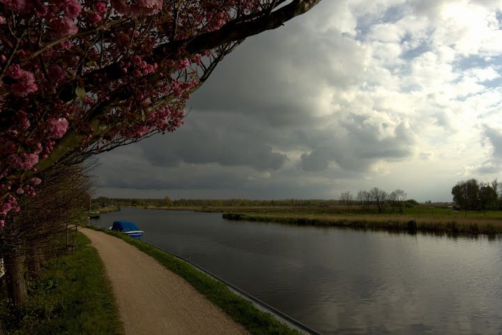 Spring in Holland.