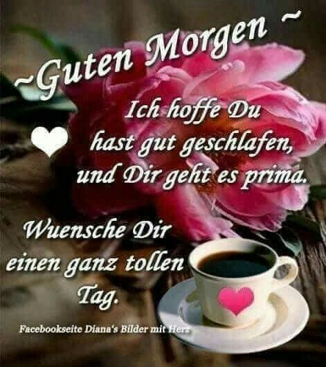 Pin von Cornelia Werner auf Guten Morgen   Lustige guten ...