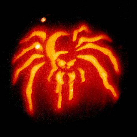 Image result for spider pumpkin carving