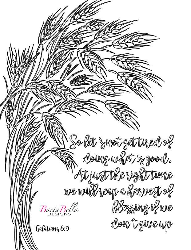 Zen Tangle Wheat Galations 6 9 Adult Coloring Page So Lets Not Get