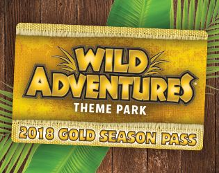 Splash Island Waterpark Wild Adventures Theme Park Water Park Adventure Theme Wild Adventures