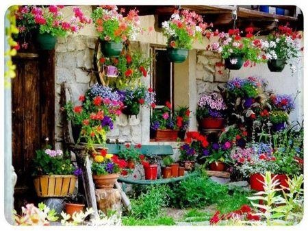 flower house - desktop nexus wallpapers | rustic gardens
