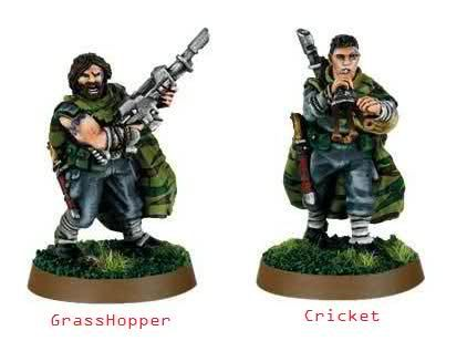 models ill be useing for my catachan army[[ The Warthogs]]   cody20