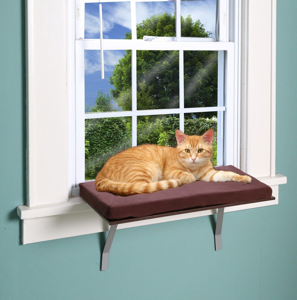 Etna Cat Window Seat Bed Perch Ledge Small To Large Cats Mounted Safe Resting Seat Brown Cat Window Perch Cat Window Cat Perch