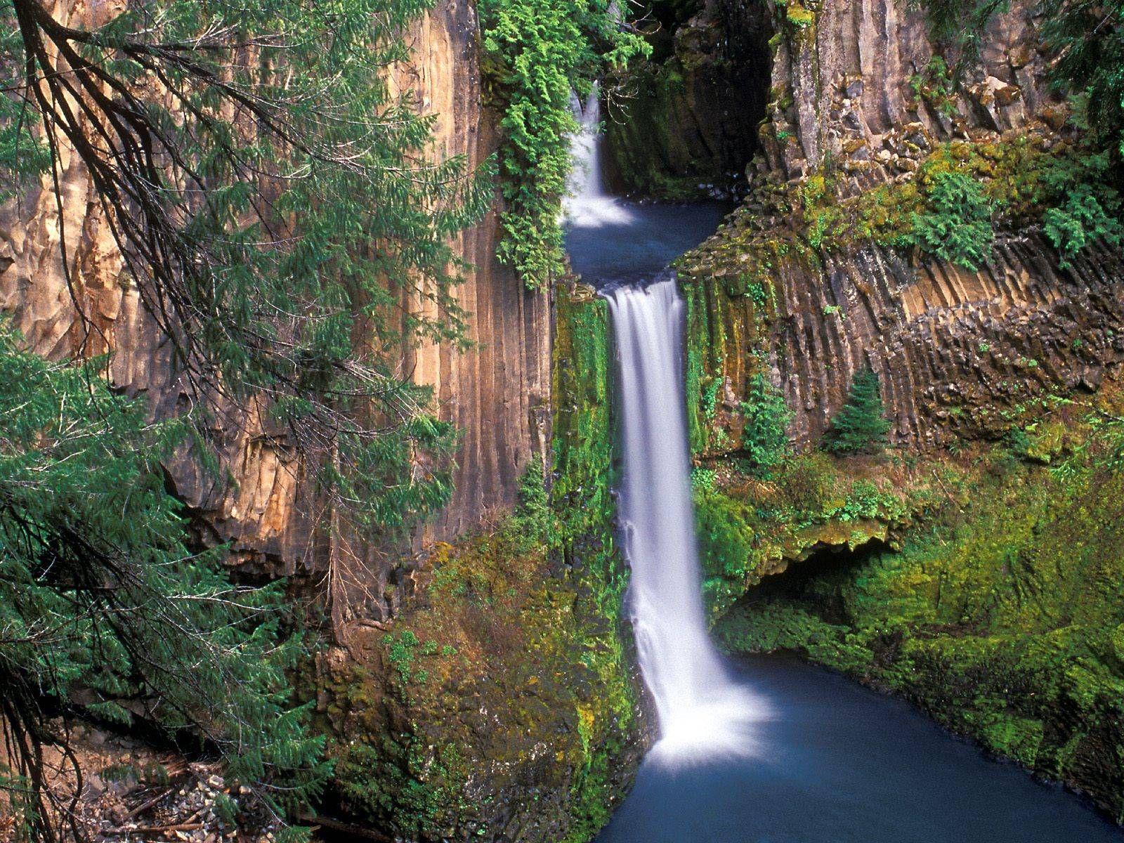 DUPLICATE httpsroadtripperscomplacestoketee falls douglas county515eccf854b97271fa00185d Toketee Falls is
