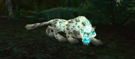 Pin On Rare And Unique Wow Pets