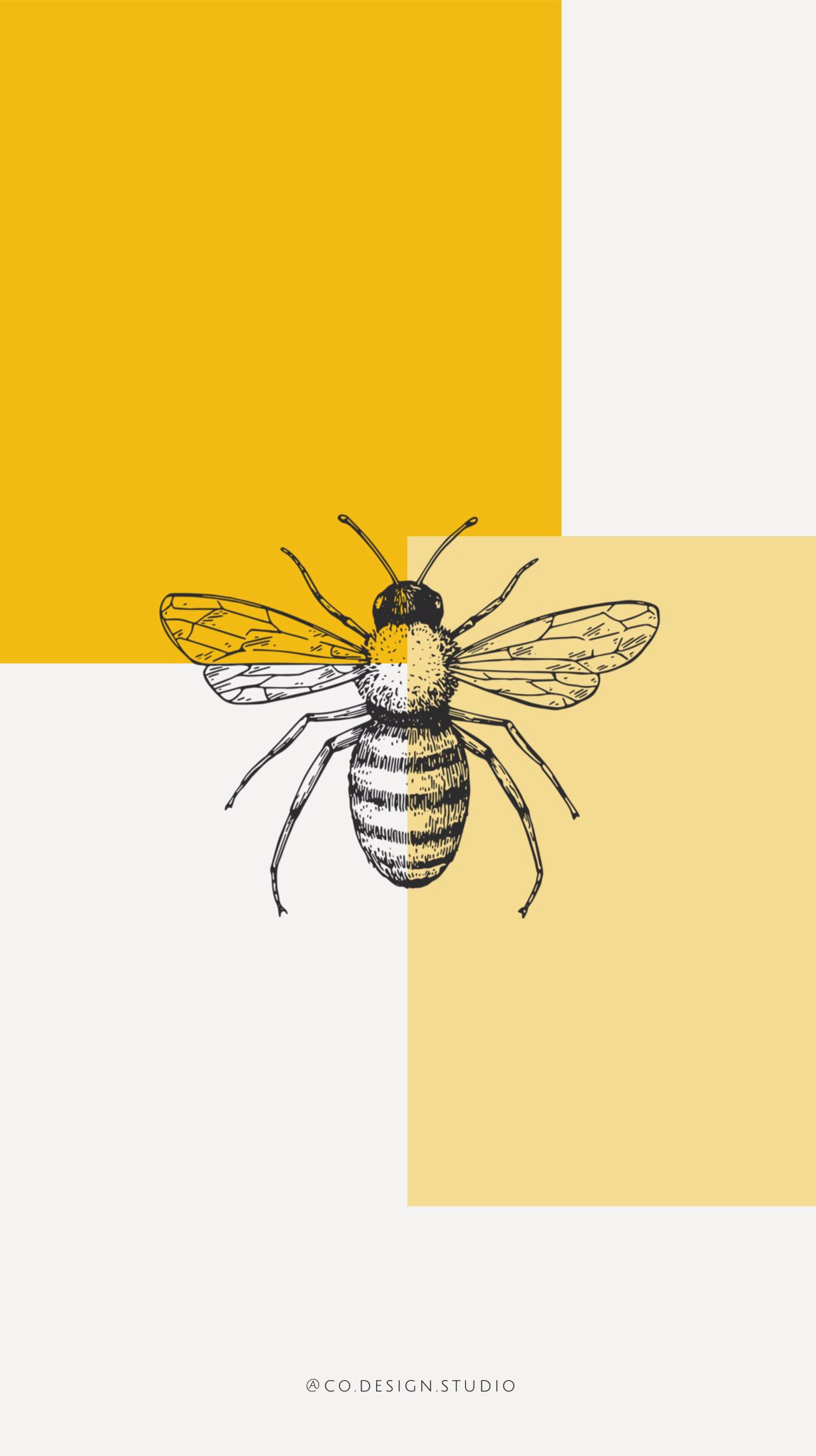 Wallpaper Iphone 2019 Graphicdesign Yellow Mustard Bee Honey Imagem De Fundo Para Iphone Ilustrações Ilustrações Florais