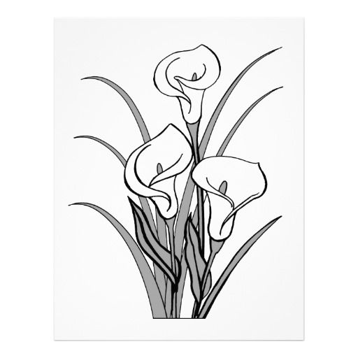image of calla lily clipart 5743 calla lily stencil clipartoons gourds designs pinterest. Black Bedroom Furniture Sets. Home Design Ideas
