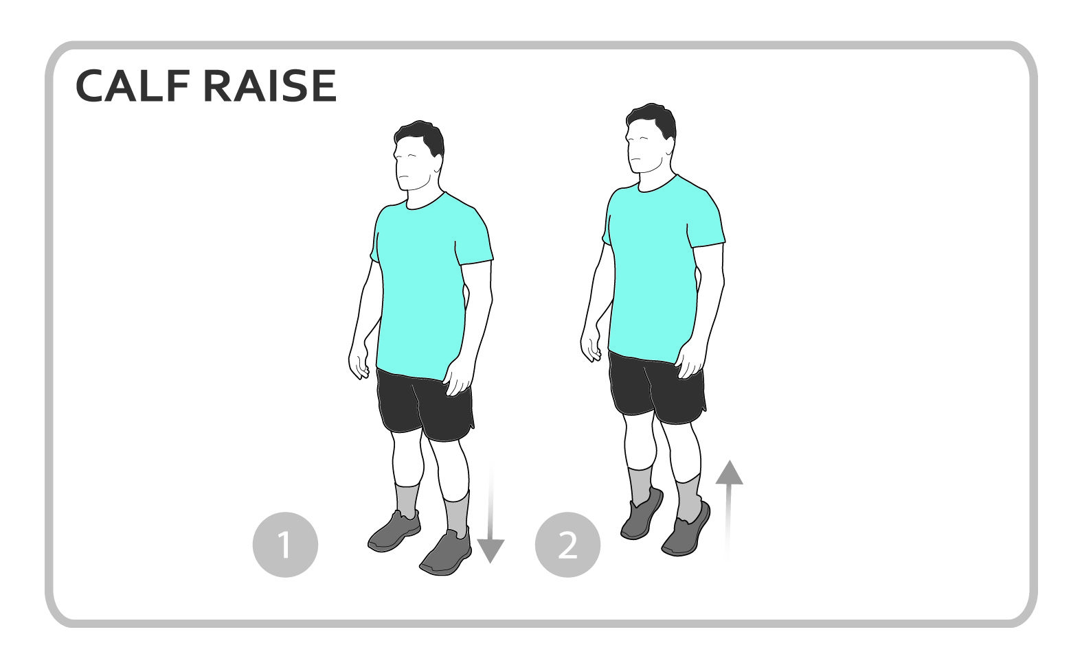 Calf Raise Exercise Diagram  Lower Body  Personal Fitness