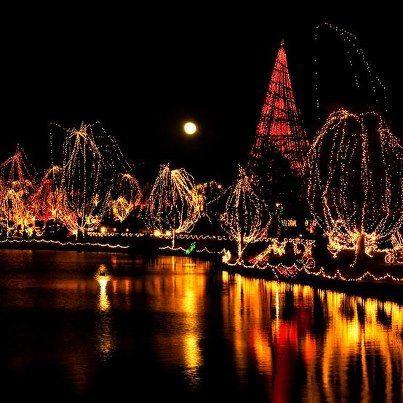 85eb3edbb3f17f9d184b65932f29fba6 - Hidden Lake Gardens Festival Of Lights