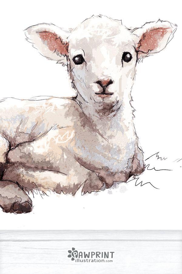 Lamb Farm Animals Nursery Art Print Children S Wall Art In 2019 School Farm Animal Nursery Baby Sheep Animal Nursery