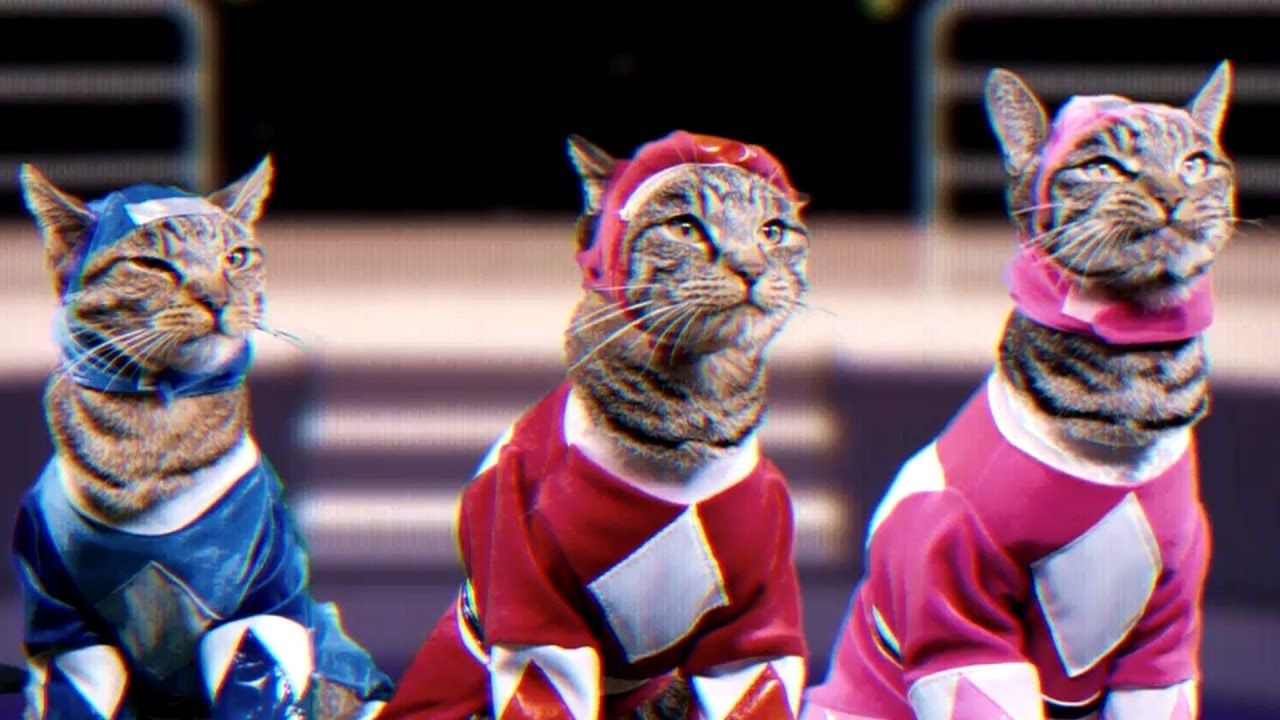 Power Rangers S Official Youtube Channel Just Released A Remake But With Cats I Love Cats Power Rangers Costume Cat Nap