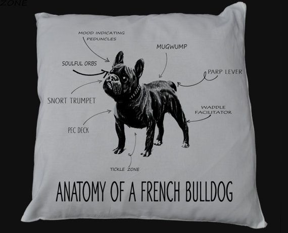 Anatomy of a French Bulldog Cushion Cover Pillow by retrostate ...