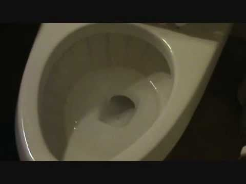 I Had Hardwater Calcium Buildup In My Toilet That I Could