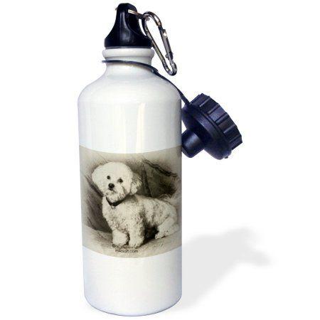 3dRose Bichon Frise, Sports Water Bottle, 21oz