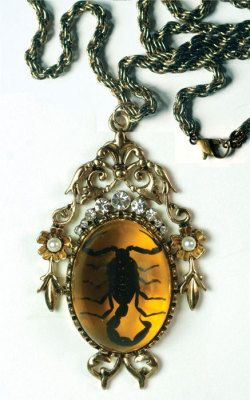 Fantastic Real Insect Scorpion Amber Braid NECKLACE Chain Pendant Gift Ornament