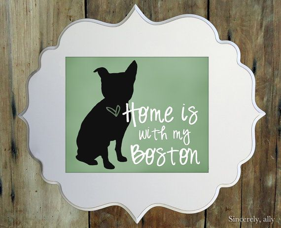 Boston Terrier Art Print  8x10 Custom Silhouette by sincerelyally