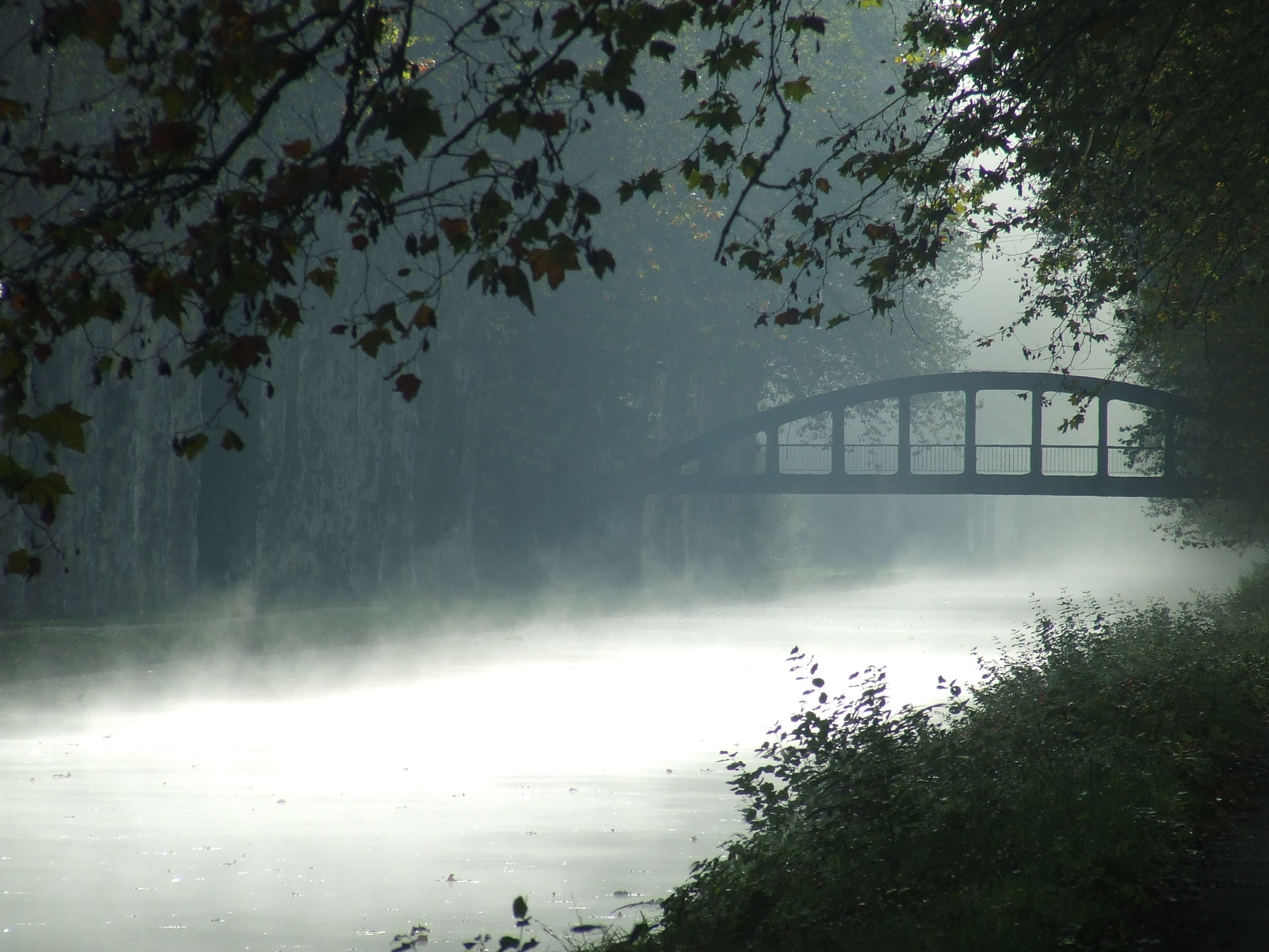 Early morning, mid-October 2012 - misty canal