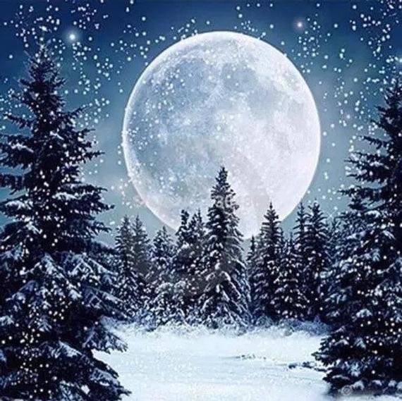 US Seller. 40x40cm Full Moon, Stars, Snow, Trees, Night. Diamond Painting kit. Square drills, Full drill. Fast Shipping #winterlandscape