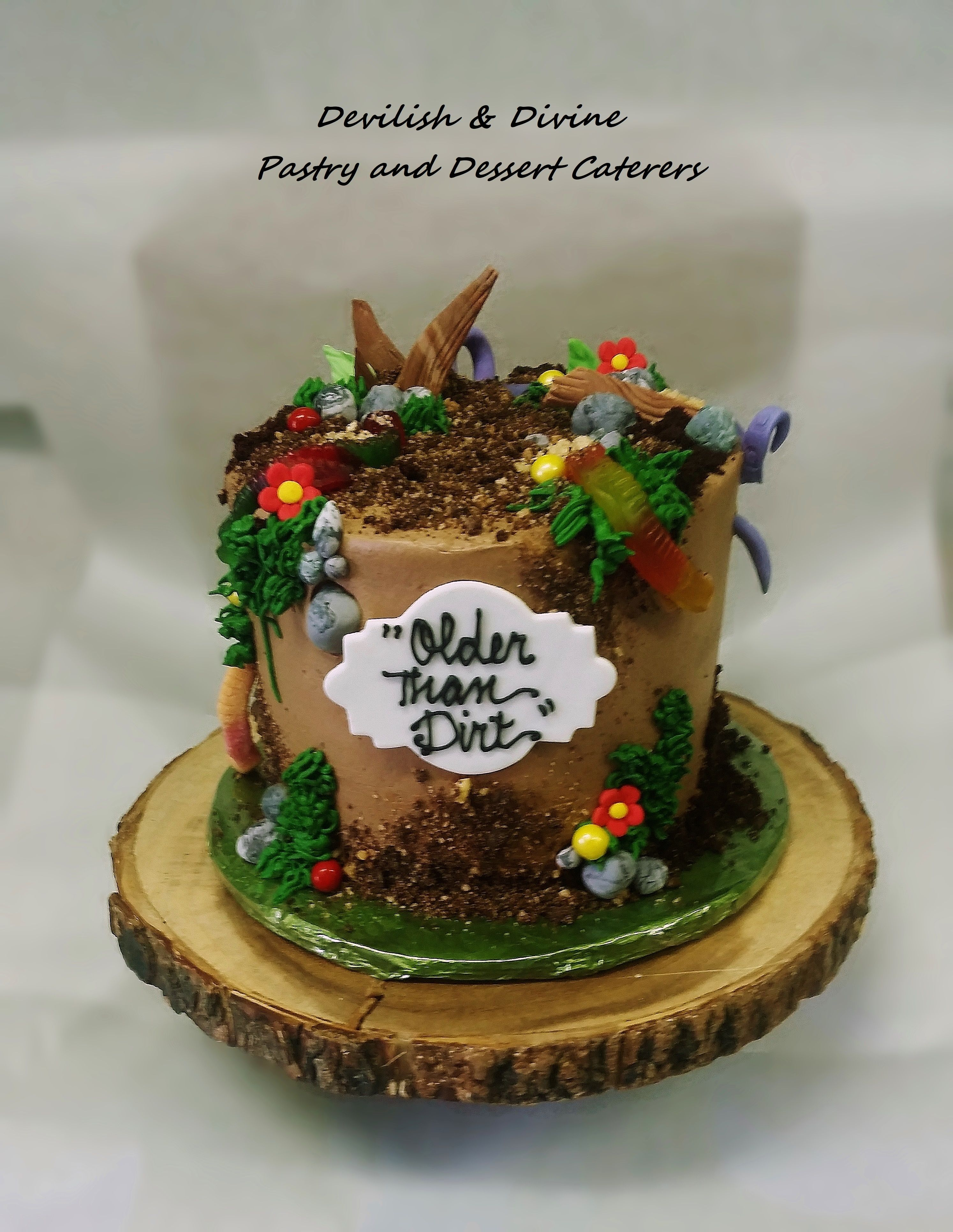 Older Than Dirt Cake Desserts Creative Cakes Cool Cake Designs