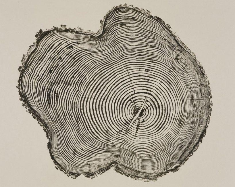 Woodcut Prints By Bryan Nash Gill Printmaking Lino Cuts