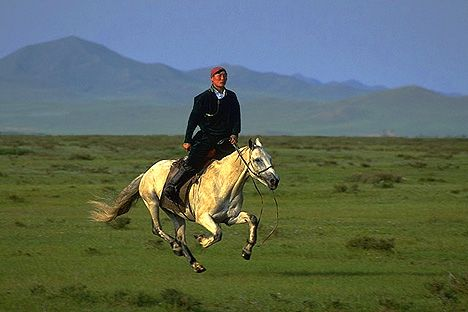 i want to ride a mongolian pony.