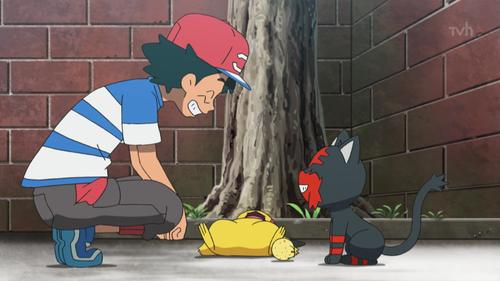 Ash S Litten Bulbapedia The Community Driven Pokemon Encyclopedia