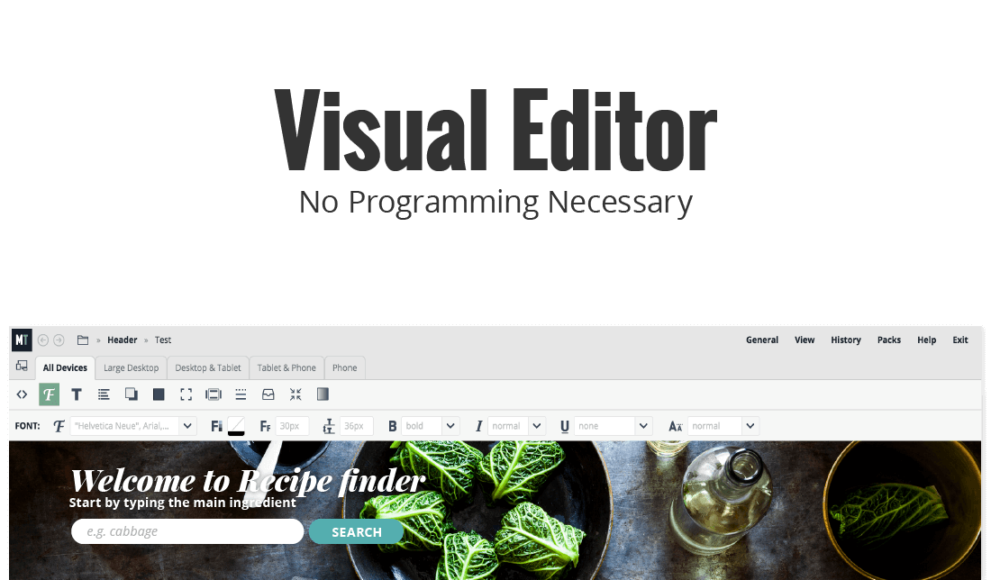 Microthemer Visual CSS Editor For WordPress Themes & Plugins - Only ...