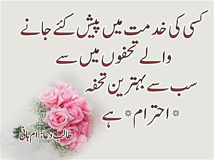 Pin by Nauman on Urdu quotes   Insperational quotes