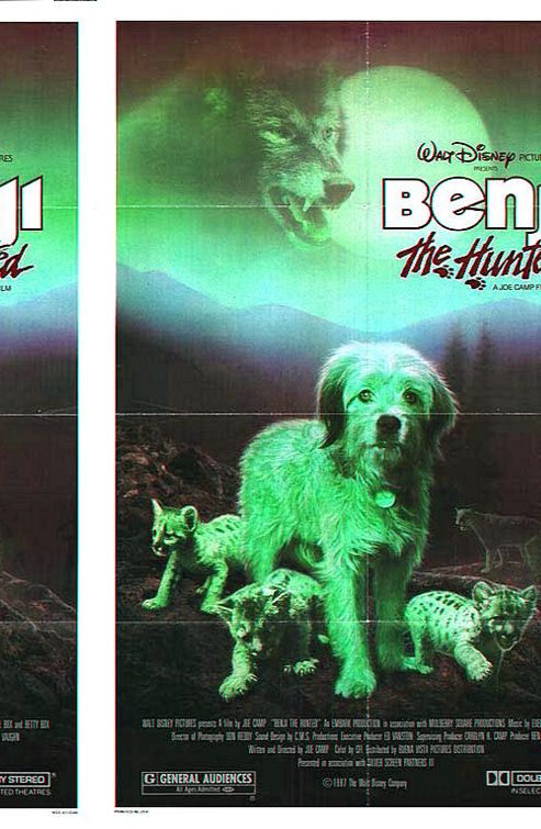 Benji The Hunted (1987) Benji is left in the wilderness after an accident - can he survive ? Red Steagall, Frank Inn, Benjean...TS family