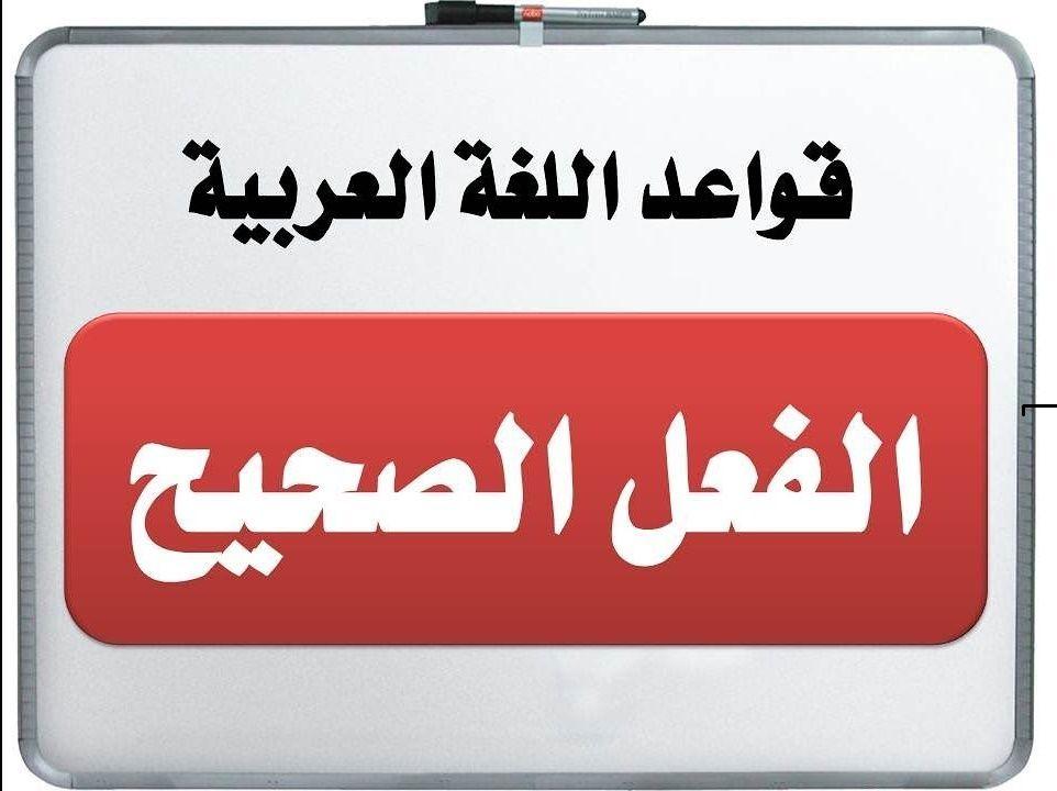 الفعل الصحيح وانواعه اللغة العربية Language Company Logo Arabic Language