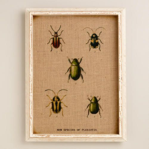 Bug Tabletop Tray At Cost Plus World Market >>
