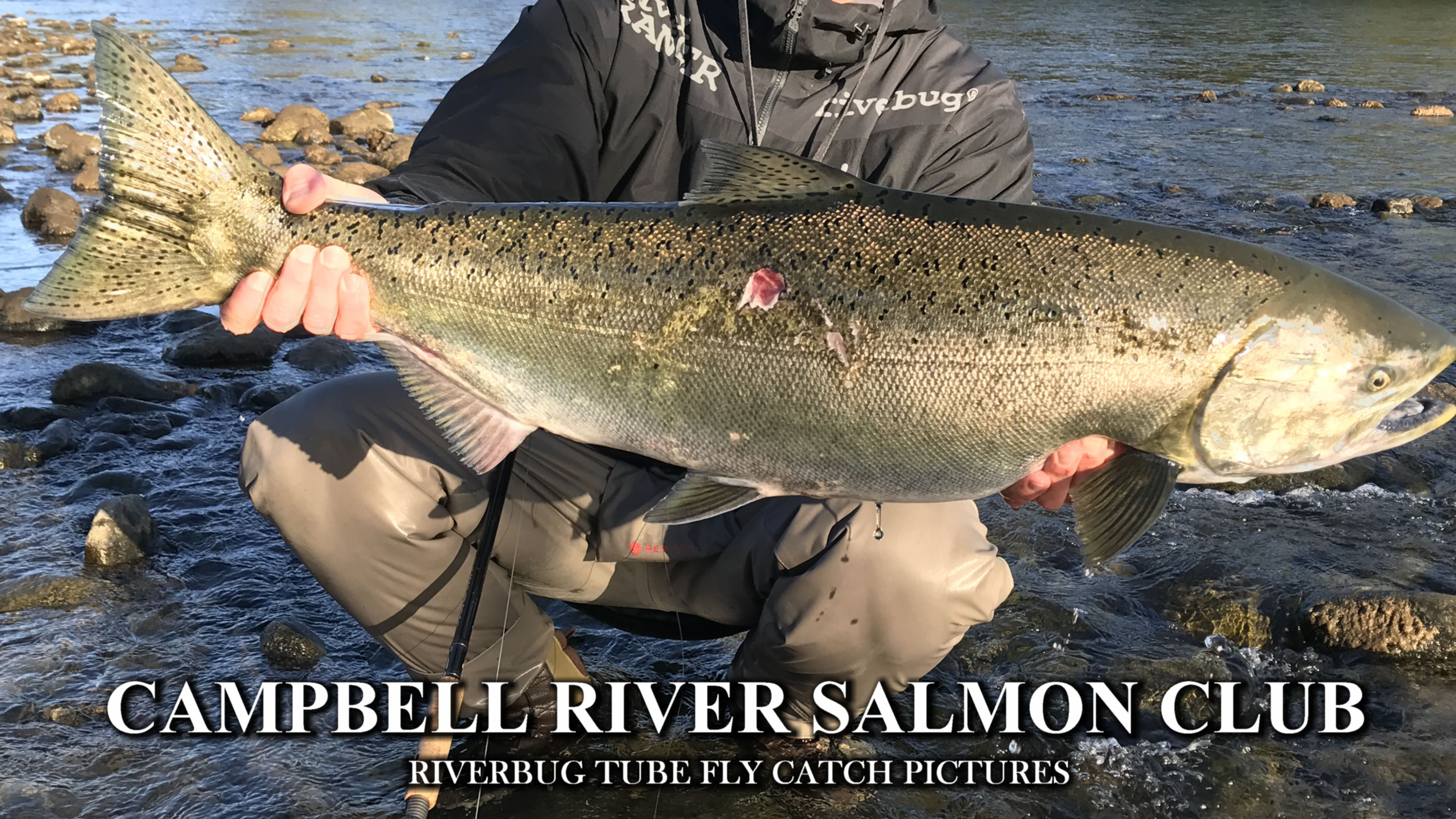 Photo of Chinook – Campbell River Salmon fishing