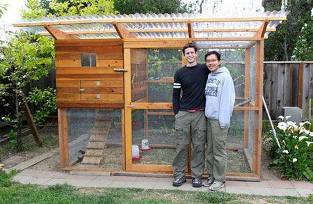 httpchickencoopplanwpcontentuploadsinspirationfor – Chicken Coop With Garden Roof Plans