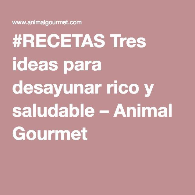 #RECETAS Tres ideas para desayunar rico y saludable – Animal Gourmet