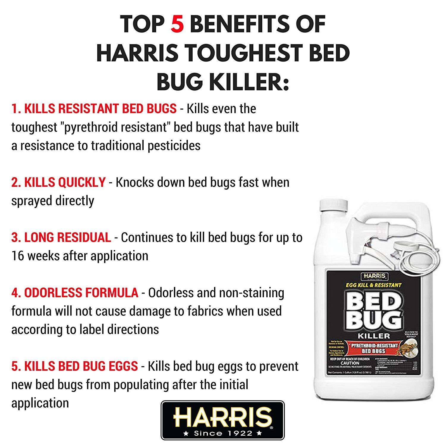 bed bugspray Discover how to rid of bed bugs