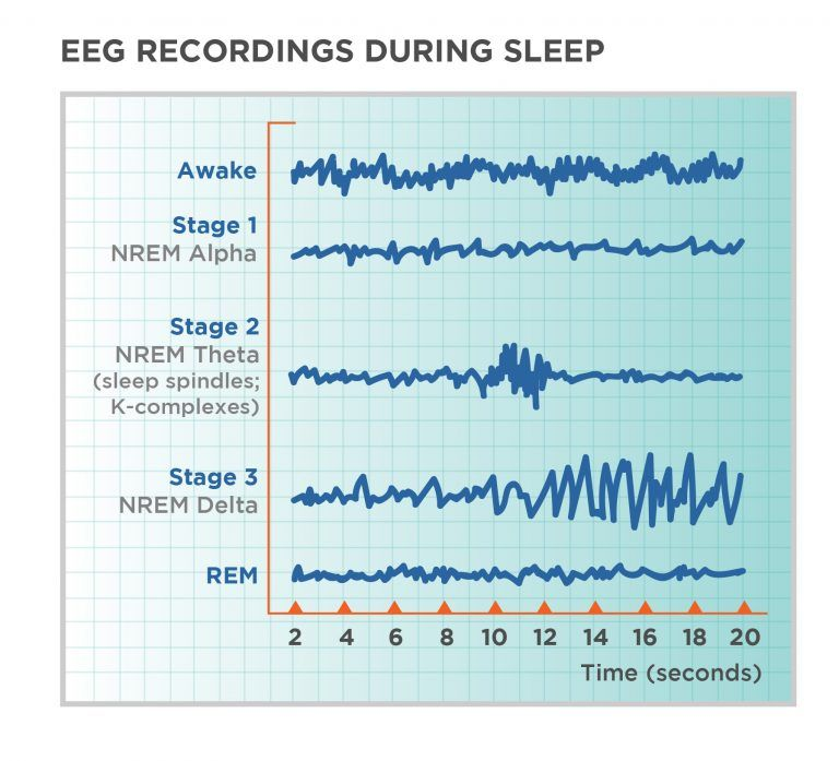 Stages of Sleep - Non-REM and REM Sleep Cycles | Tuck Sleep