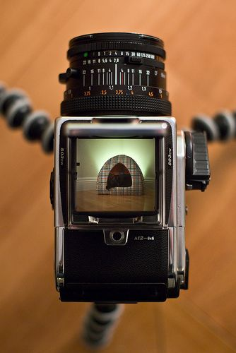 Hasselblad 503CW by nuzz, via Flickr | Photography