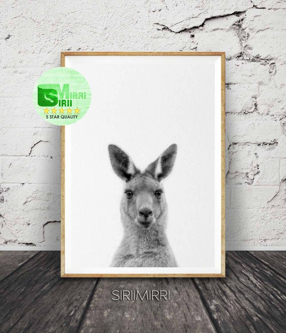 Kangaroo Print Australian Animal Wall Art Nursery Decor Black And White Printable Kids Room Large Poster Digital Australiana By Siriimirri On