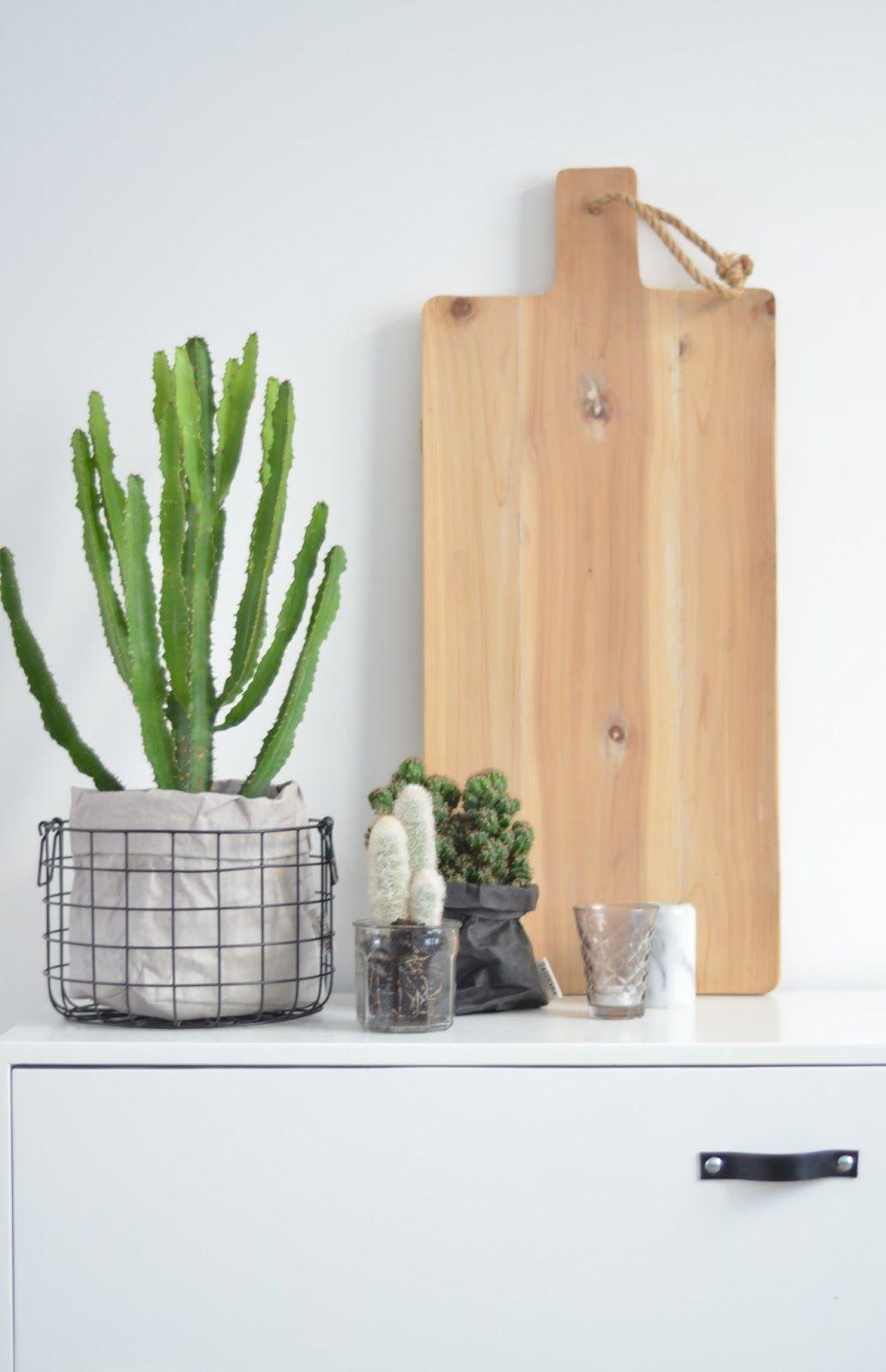 Van het kastje naar de muur botanisch wonen trend groen planten botanisch wonen - Volwassen kamer decoratie ...