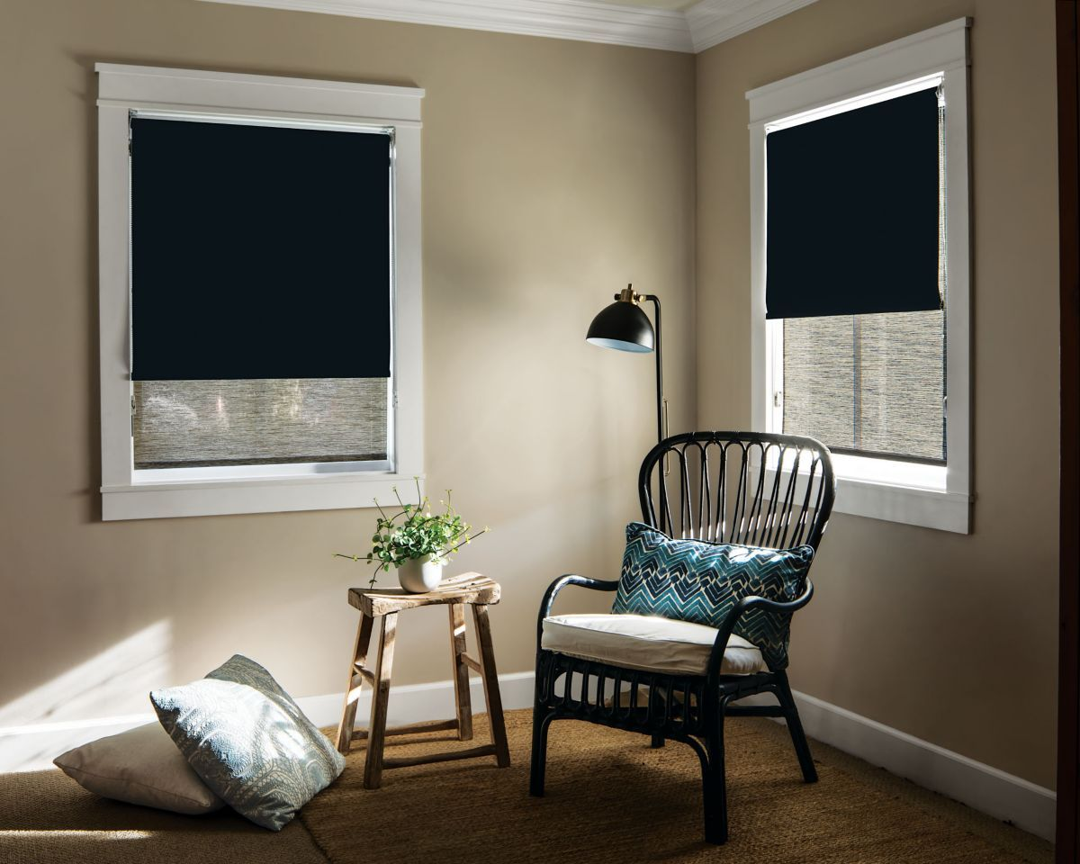 Classic roller dual shade b classic roller dual shade