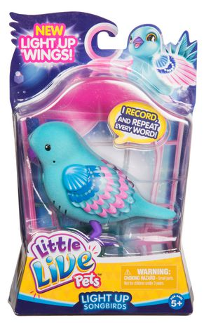 Little Live Pets Shelly Shimmer Bird Little Live Pets Pets Pet Bird