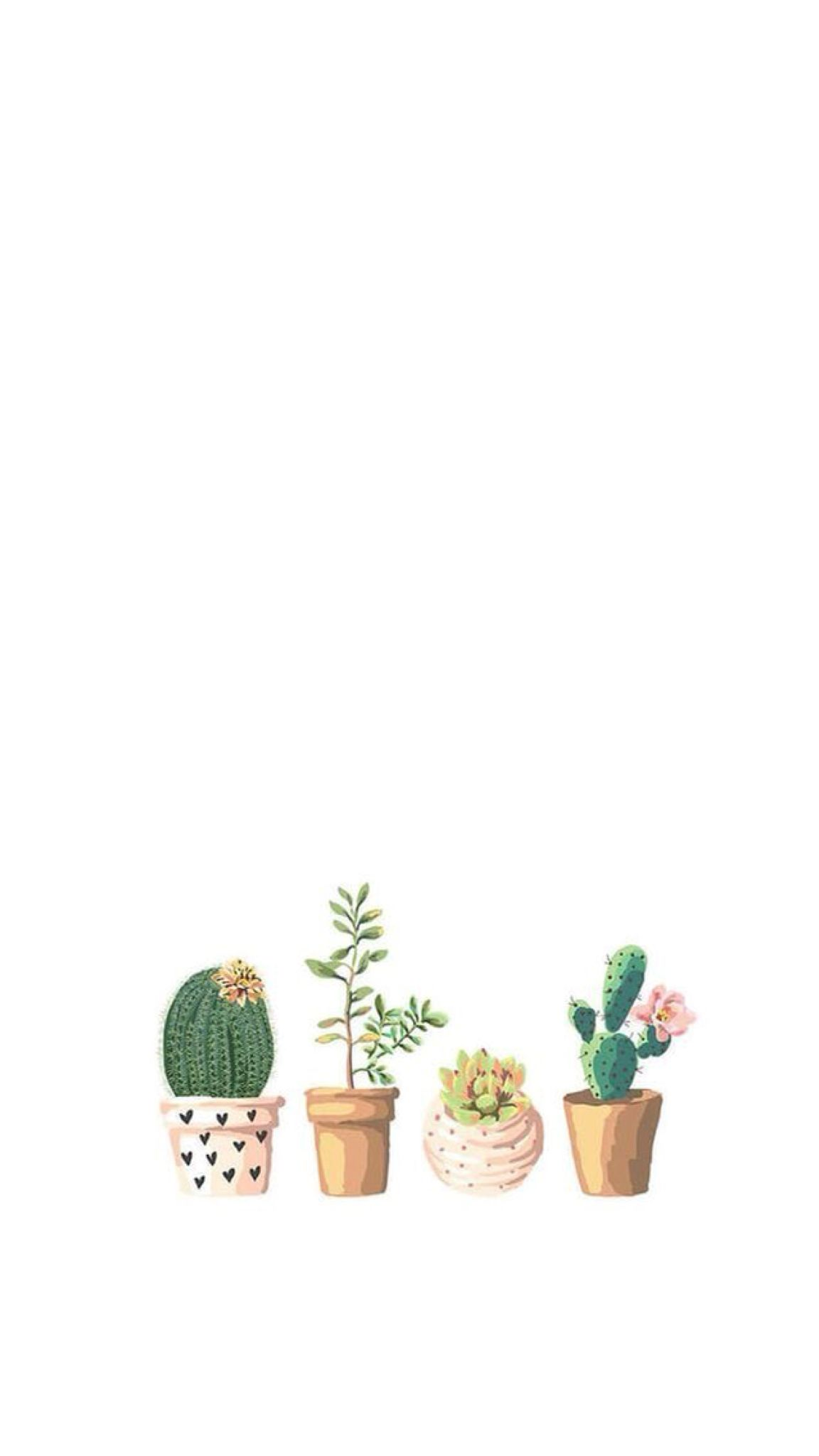 Wall paper Paper wallpaper, Plant wallpaper, Backgrounds