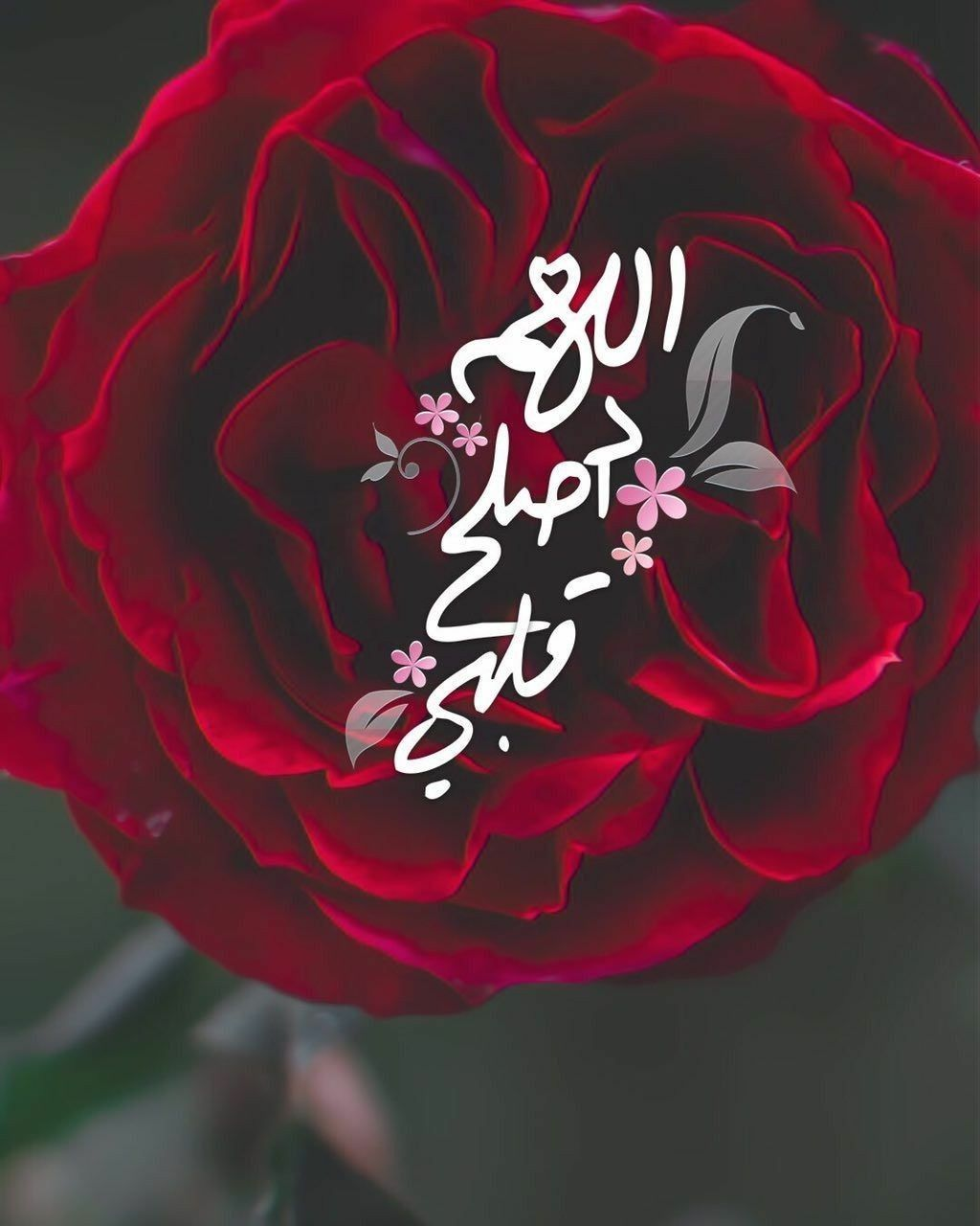 Pin By زهرة الياسمين On Duea دعاء Neon Signs Neon Islam