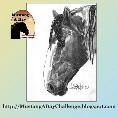 Mustang A Day Personal Challenge of LindaLMartin: Picasso Band Stallion of Sand Wash Basin HMA #409