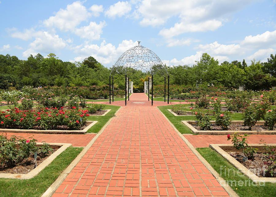 Birmingham,AL Botanical Gardens Rose Garden. Beautiful Place To Have A  Wedding And Take