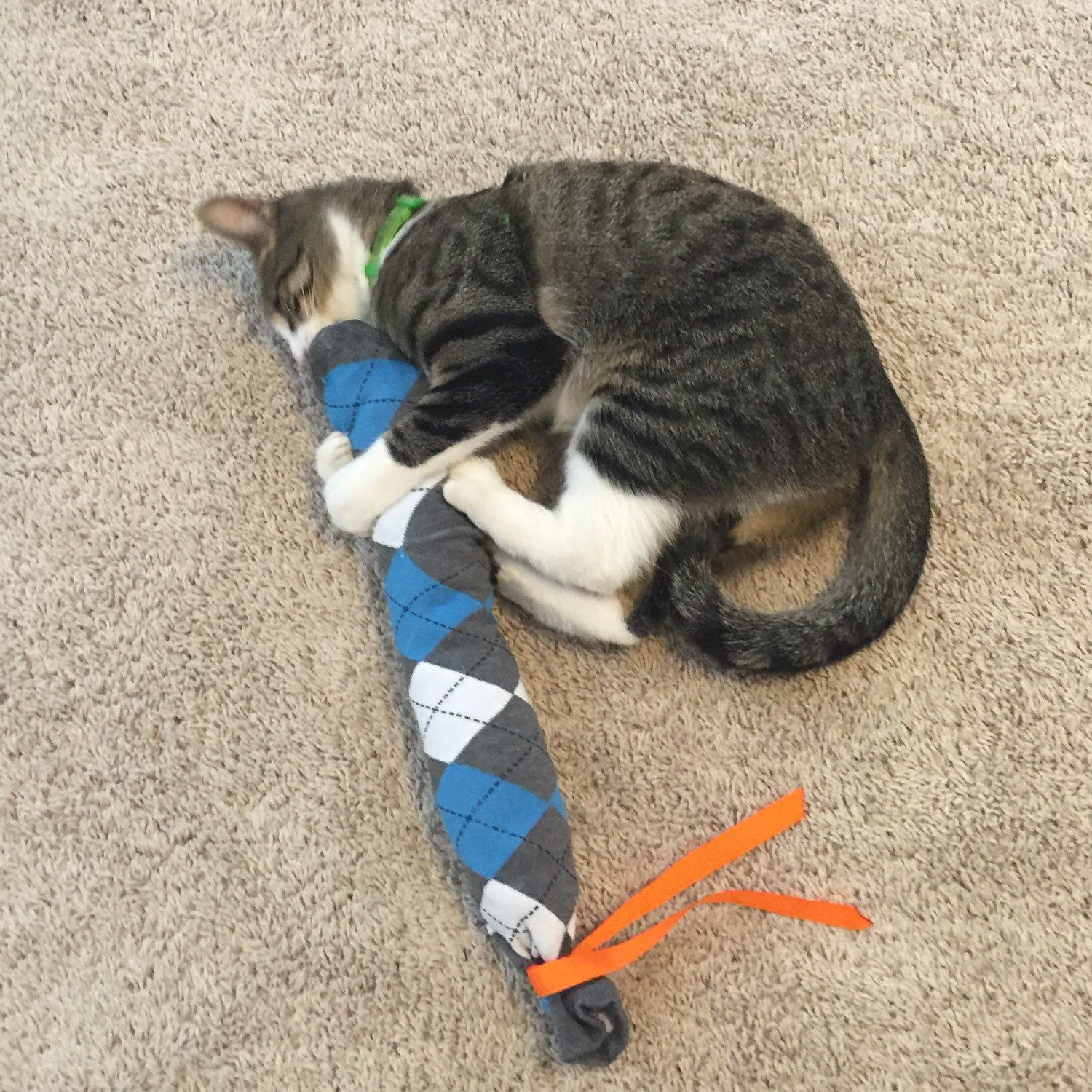 Image result for cat attacking toy